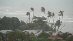 """PAHO urges countries to prepare for """"dual threat"""" of hurricane season and COVID-19"""